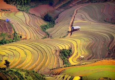 Yunnan-Novembre